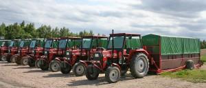 """Eine stattliche Treckerriege ist bei der Ernte im Einsatz: 11 Felder werden """"abgeerntet"""", von 800 Pflückern"""
