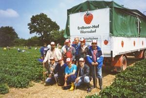 Pflücker in Aktion: Einsatz auf Warnsdorfer Erdbeerfeldern im Jahre 1988