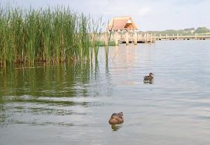 Pure Idylle umgibt die Fischereihof-Anlage in der Gemeinde Hemmelsdorf bei Timmendorfer Strand (Foto: Kartin Gehrke)