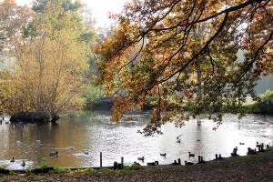 Tradition mit Charme: Timmendorfer Kurpark