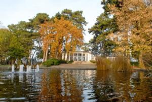 Bedrohte Schönheit: der Timmendorfer Strandpark