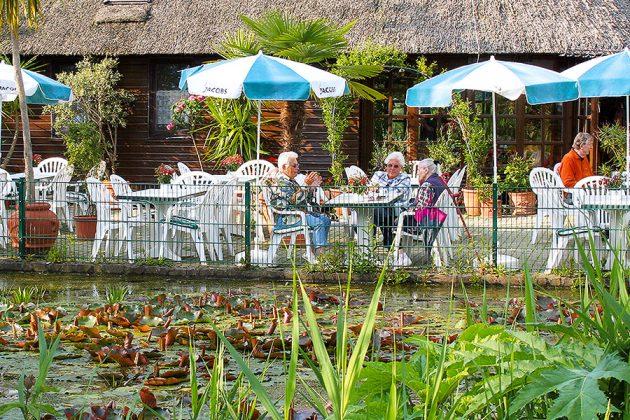 Garantiert das exotischste Café: Im Vogelpark Niendorf erleben Sie Genuss mit Klangkulisse