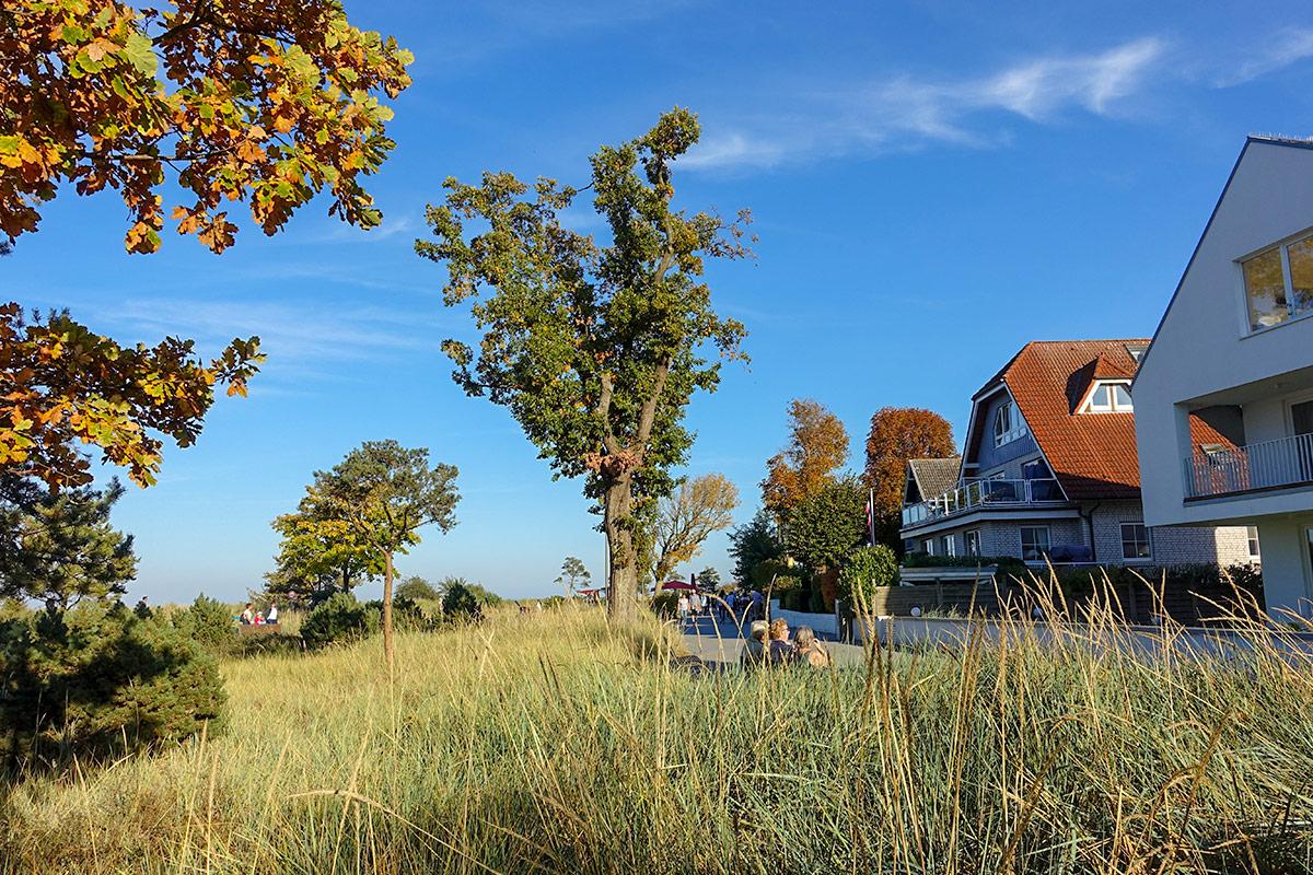 Goldene Blätter, goldener Oktober: die Temperaturen am Wochenende des 13. und 14.10.2018 brechen alle Rekorde