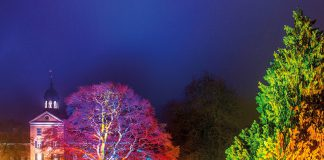 Zauberhafte Beleuchtung im Schlosspark: Das Eutiner Schloss ist Mittelpunkt festlicher Momente und winterlichen Aktionen © Wirtschaftsvereinigung Eutin