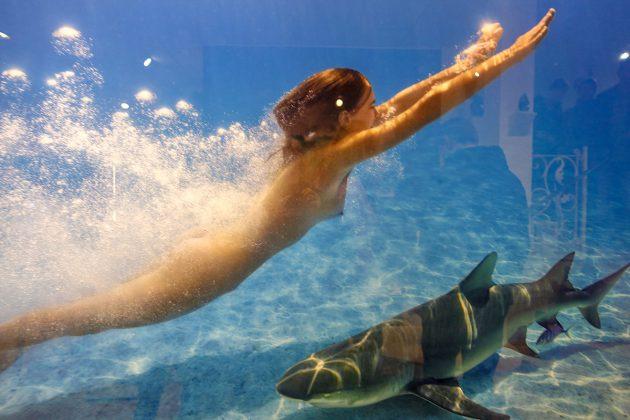 """""""...da hat unser Model fast den Hai umarmt"""", erzählt Wim Westfield bei der Vernissage. Hier ist das spannende Foto."""