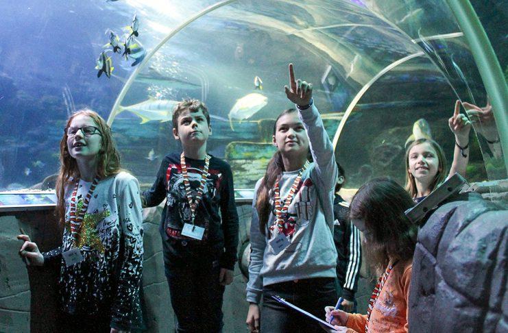 """Alle Fische sind schon da: die """"Junior Aquaristen"""" helfen eifrig beim Zählen im Sea Life"""