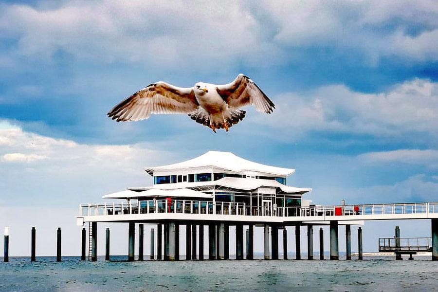 """Was auch immer entschieden wird: Die Stimmung am Meer bleibt erhalten. Die Möwen schweben über dem Teehaus und dem Restaurant """"Wolkenlos"""" auf der Seebrücke. Foto: Nicole Rankovic"""