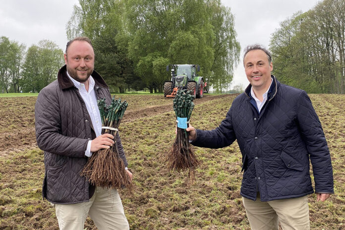 Premiere als Winzer auf dem Golfplatz: Andreas (links) und Christian von Oven mit den frisch gelieferten Reben.